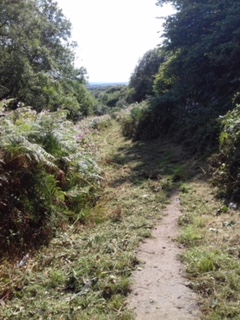 Footpath Bettws to Bryngarw